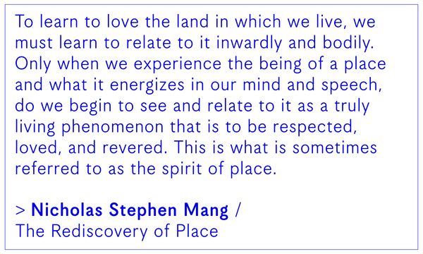Nicholas Stephen Mang / The Rediscovery of Place