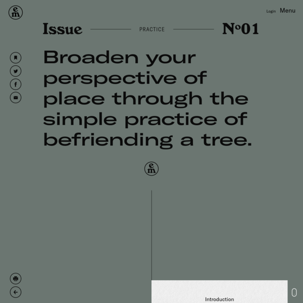 Broaden your perspective of place through the simple practice of befriending a tree.