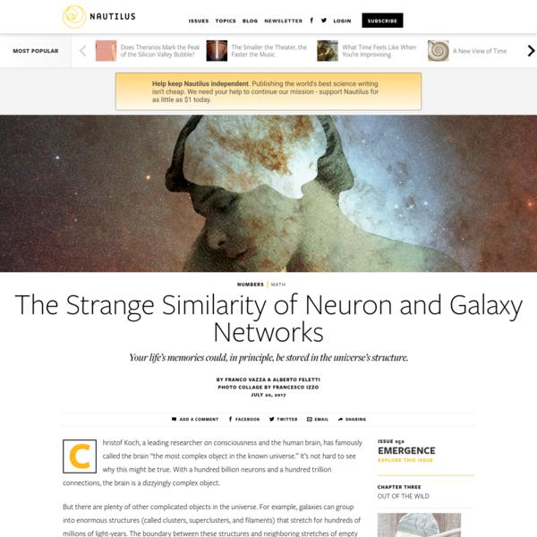 The Strange Similarity of Neuron and Galaxy Networks - Issue 50: Emergence - Nautilus