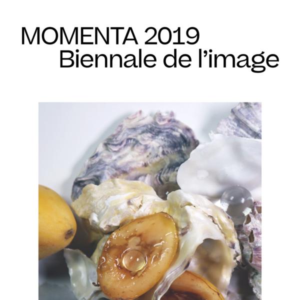 Momenta 2019