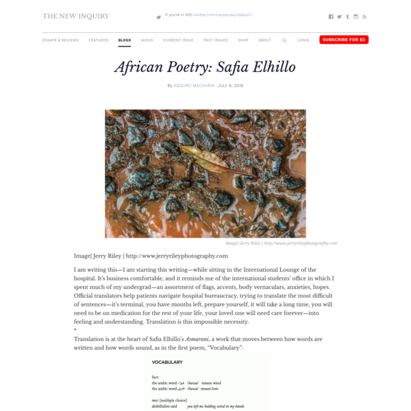 African Poetry: Safia Elhillo