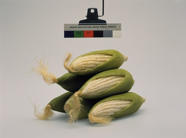 2014-8-9-christopher-williams-moma-corn.jpg