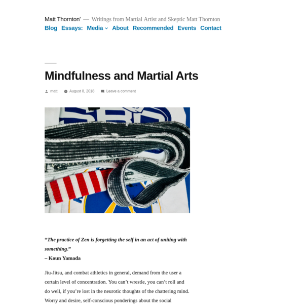Mindfulness and Martial Arts