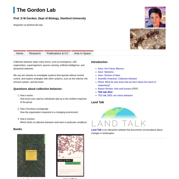 The Gordon Lab