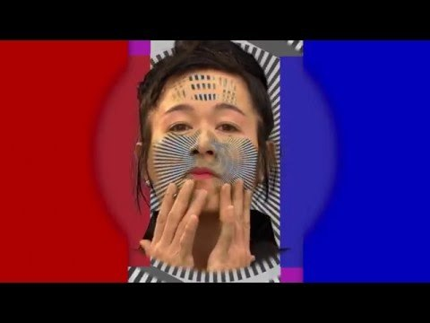 Hito Steyerl - How Not to be Seen A Fucking Didactic Educational .MOV File 2013
