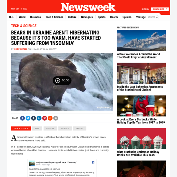 """Bears in Ukraine aren't hibernating because it's too warm, have started suffering from """"insomnia"""""""