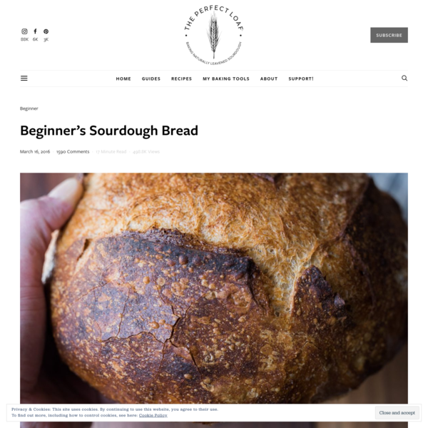 Beginner's Sourdough Bread | The Perfect Loaf