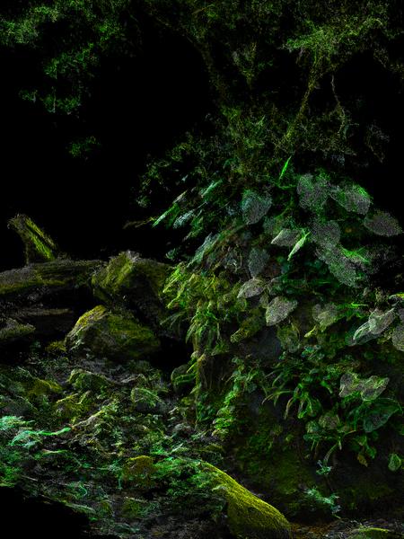 rainmaker-06_1px_50-_30x40_75dpi_001.jpg