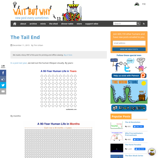 The Tail End - Wait But Why
