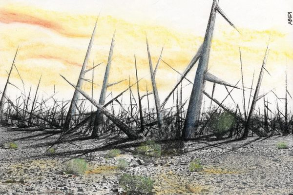 Meier, Allison. 'A Nuclear Warning Designed to Last 10,000 Years'.
