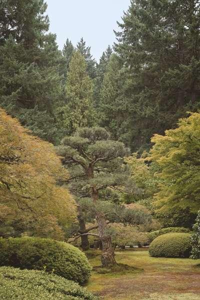 kengo-kuma-and-associates-leonid-furmansky-japanese-gardens-in-portland.jpg