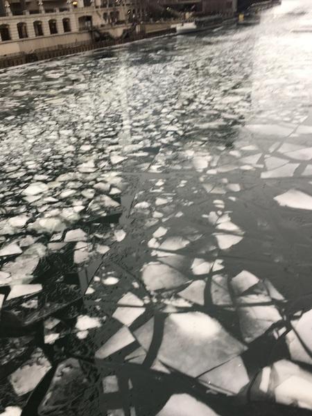 Central Park Ice, 2/4/19, 8:42 AM