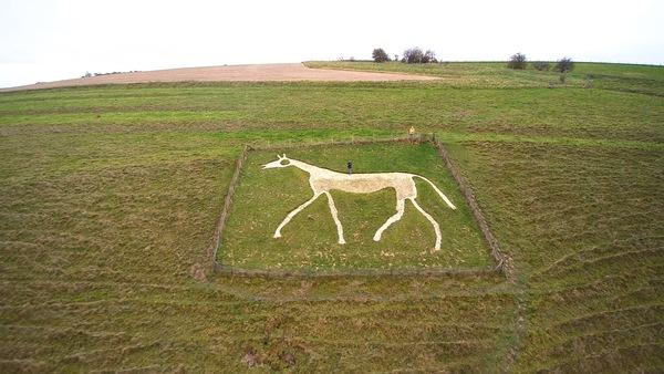 pewsey_white_horse.jpg