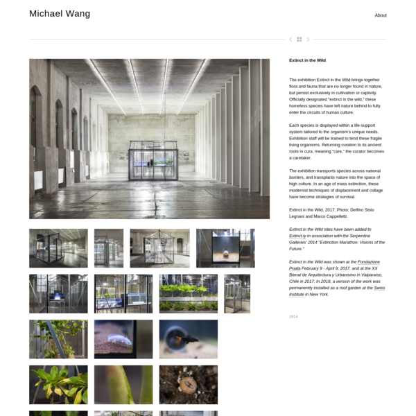 Extinct in the Wild - Michael Wang