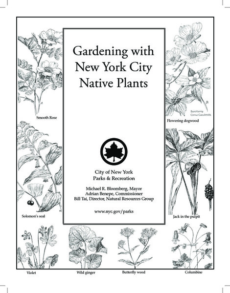 nrg_publication_gardening_with_nyc_native_plants.pdf