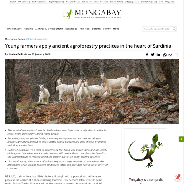 Young farmers apply ancient agroforestry practices in the heart of Sardinia