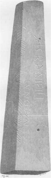 Inscribed Stone, St. Dogmaels / The Ogham Rosetta Stone