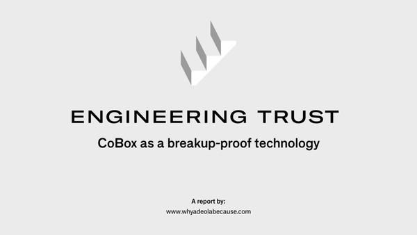 report_cobox.pdf