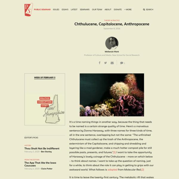 Chthulucene, Capitalocene, Anthropocene - Public Seminar