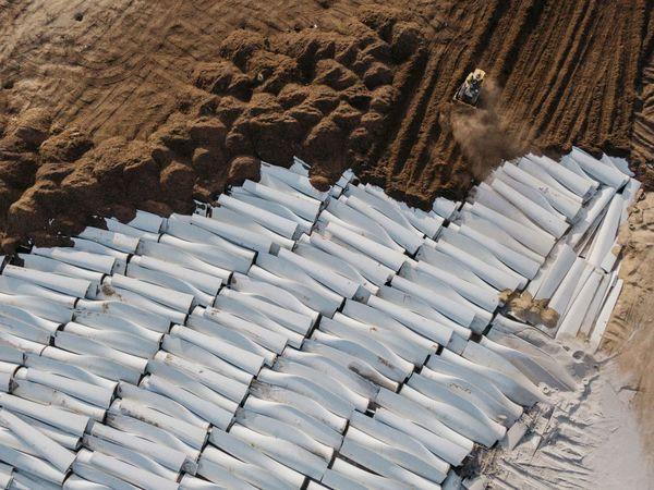 wind turbines mass grave
