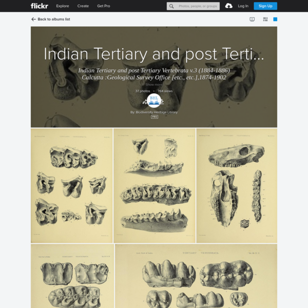Indian Tertiary and post Tertiary Vertebrata v.3 (1884-1886)