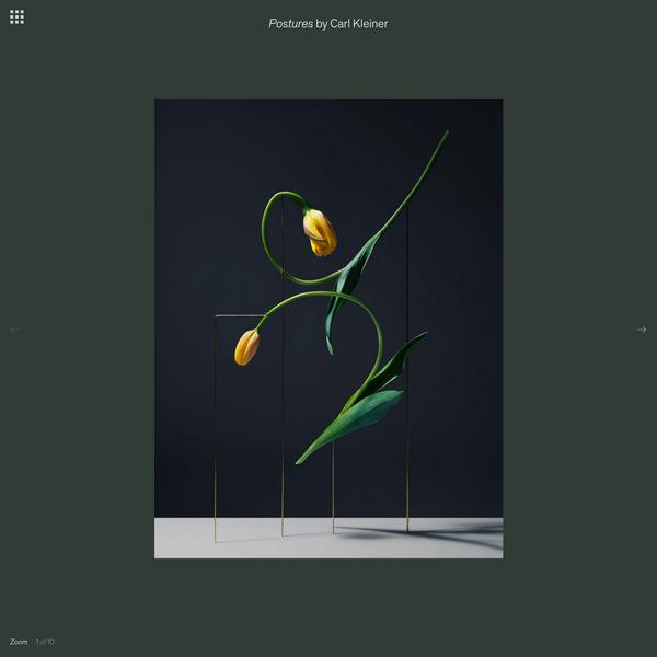 Postures - Carl Kleiner