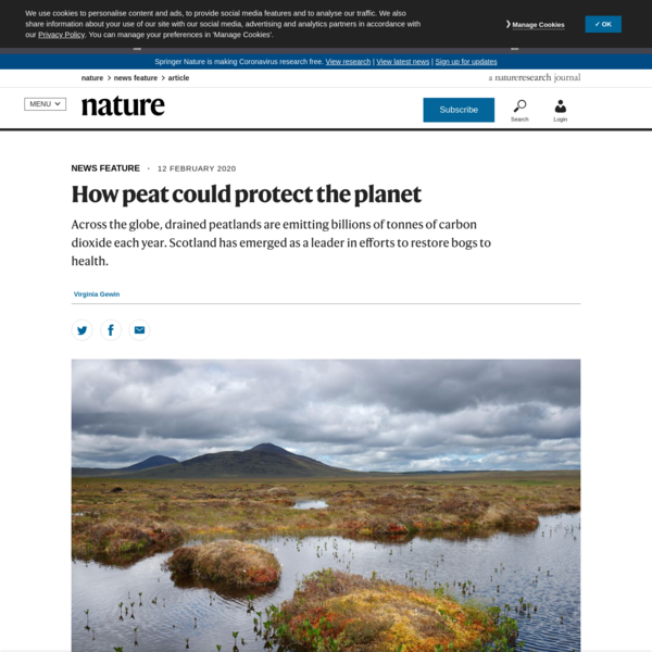 How peat could protect the planet