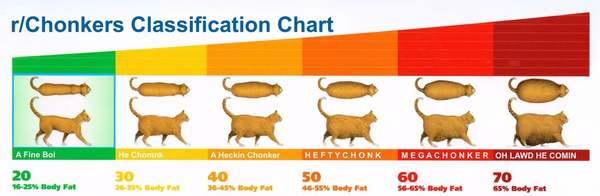 Chonker Identification Chart