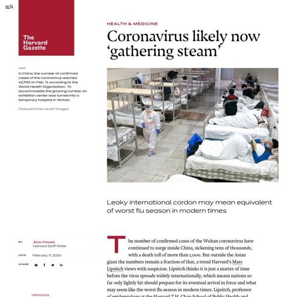Harvard expert says coronavirus likely now 'gathering steam'