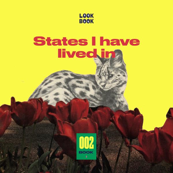 002 — LookBook.wtf