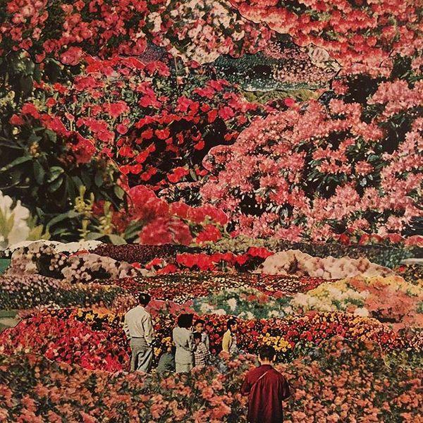 """flower fields"" . . . . . #collage #collageart #collage_art #collage_guild #collage_expo #collagear #collageartwork #collage..."