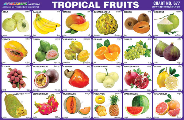 tropical-fruits.jpg