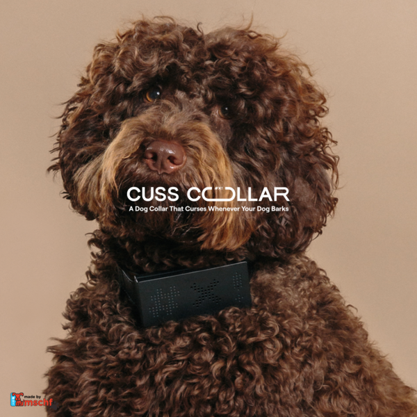 Cuss Collar