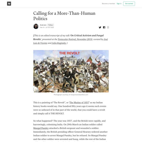 Calling for a More-Than-Human Politics - Anab Jain - Medium