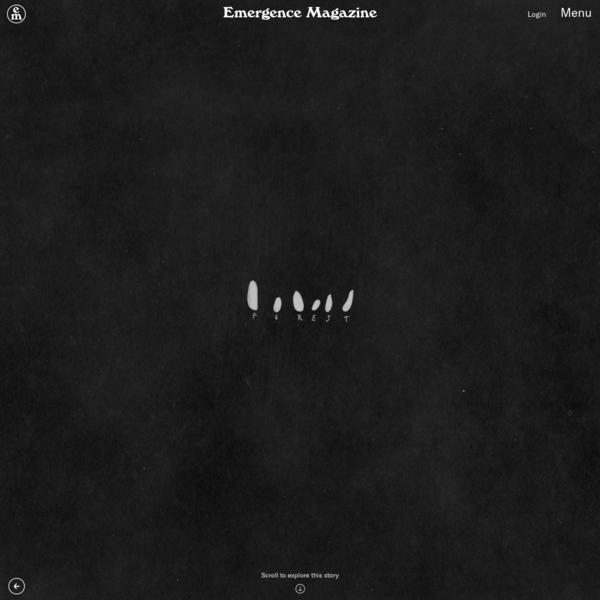 Forest - Emergence Magazine