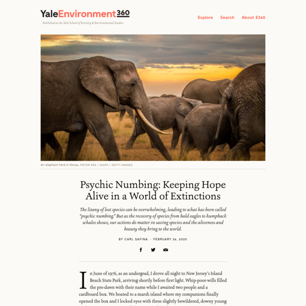Psychic Numbing: Keeping Hope Alive in a World of Extinctions