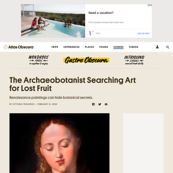 The Archaeobotanist Searching Art for Lost Fruit