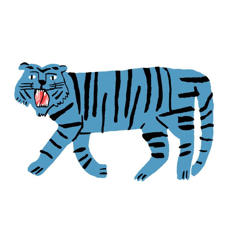 lucy-kirk-big-cat?format=1500w