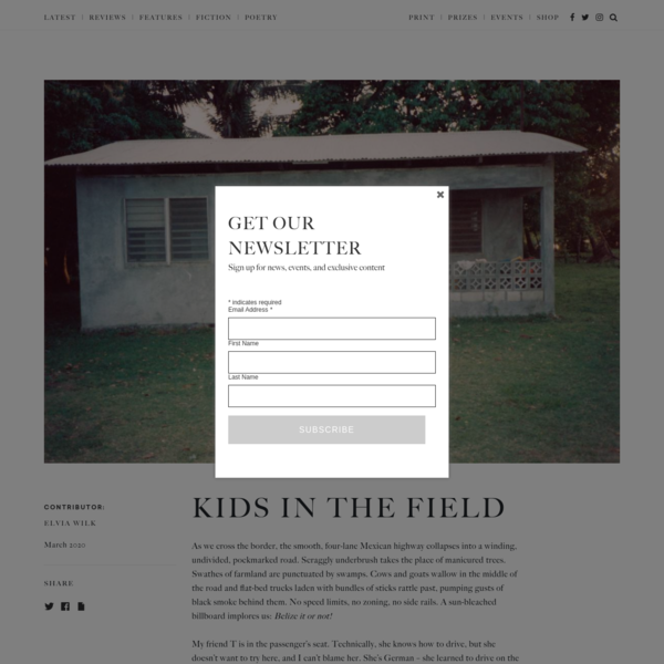 Kids in the Field - The White Review