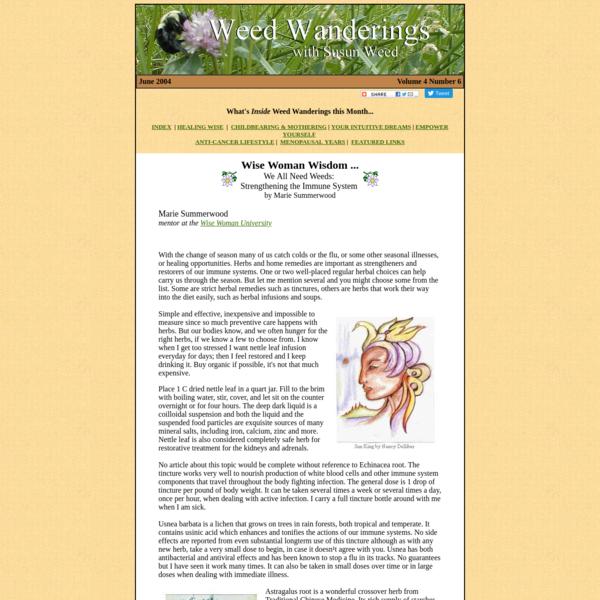 Wise Woman Wisdom - Strengthening the Immune System by Marie Summerwood - Weed Wanderings Herbal eZine with Susun Weed