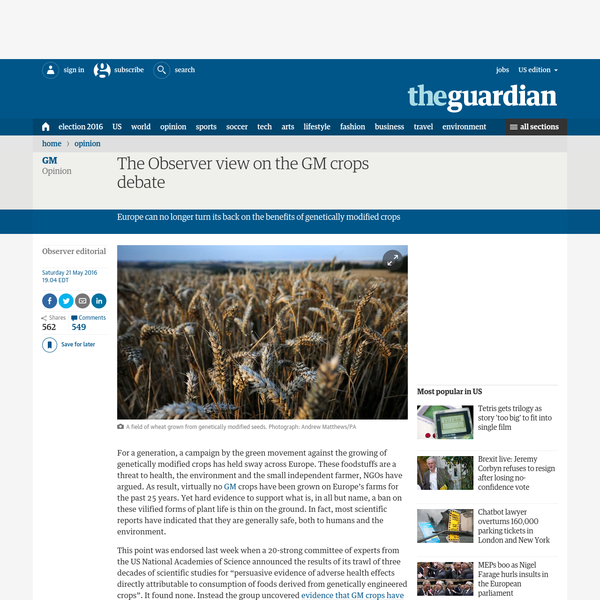 The Observer view on the GM crops debate
