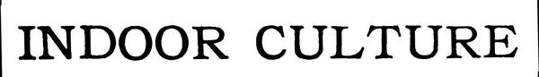 c8bd4f64-a3c8-43ed-883e-254c0e7a5781.jpg