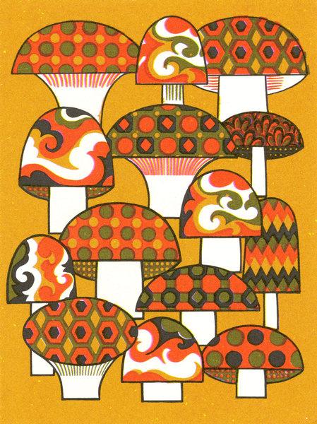 shrooms-tally.jpg