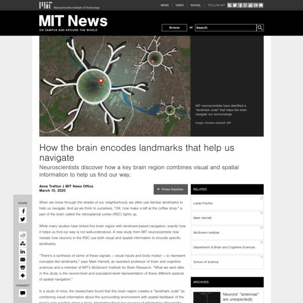 How the brain encodes landmarks that help us navigate