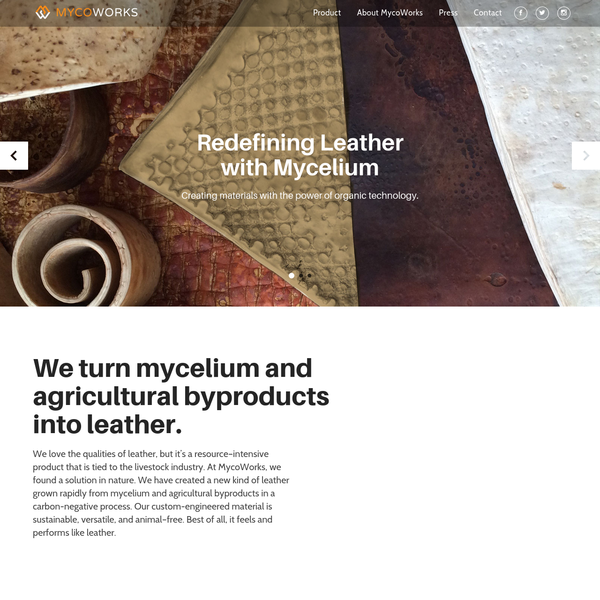 MycoWorks makes a new kind of leather grown rapidly from mycelium and agricultural byproducts in a carbon-negative process.