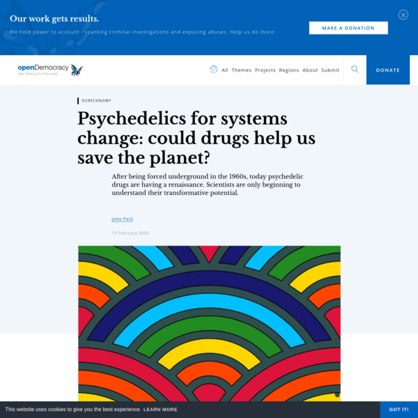 Psychedelics for systems change: could drugs help us save the planet?