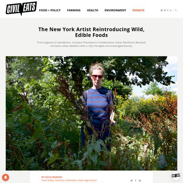 The New York Artist Reintroducing Wild, Edible Foods   Civil Eats