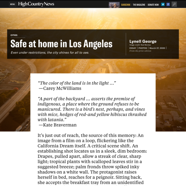 Safe at home in Los Angeles, by Lynell George