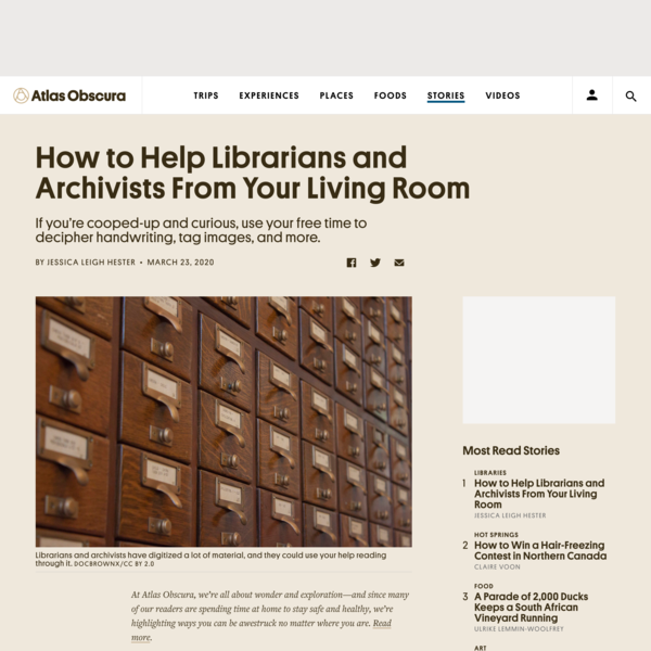 How to Help Librarians and Archivists From Your Living Room
