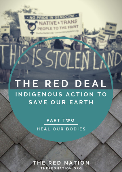 The Red Deal Part Two: Heal Our Bodies